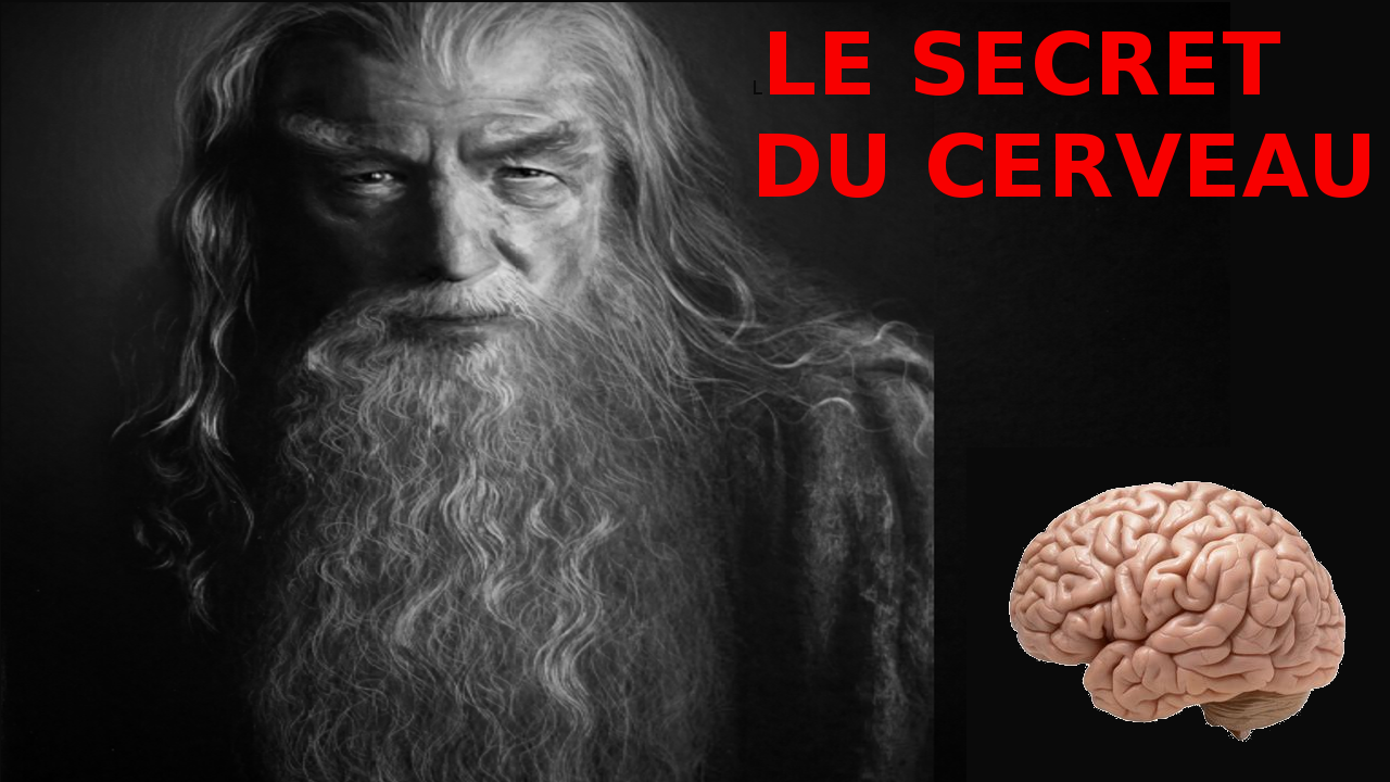 Secret cerveau